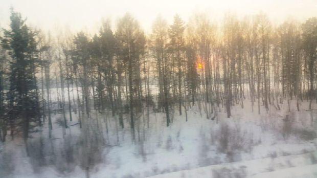 Gimana Rasanya Naik Kereta Trans Siberia saat Musim Salju?